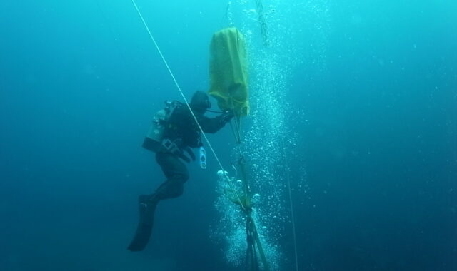 Uncovering marine biophysical interactions with simultaneous observations from multiple current meters